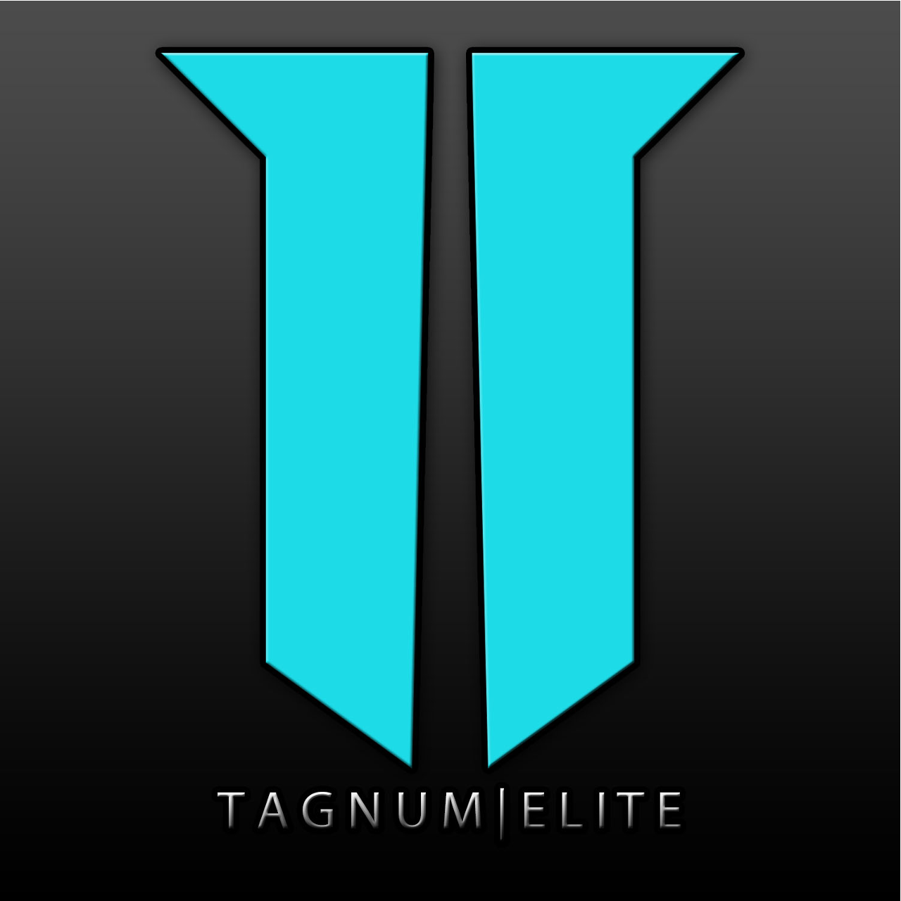 Avatar of TagnumElite